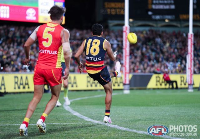 The AFL Review: Round 5, 2019 – JT's Sporting Reviews
